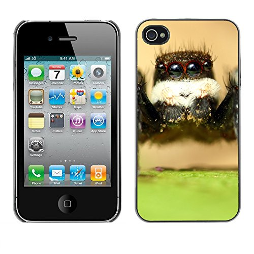 Premio Sottile Slim Cassa Custodia Case Cover Shell // F00010208 Araign? e // Apple iPhone 4 4S 4G