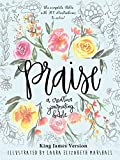 Praise: A Creative Journaling Bible
