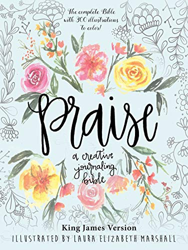 Praise: A Creative Journaling Bible ()