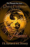David Finkleman and the Fire of the Phoenix: David Finkleman Mystical Mysteries Series