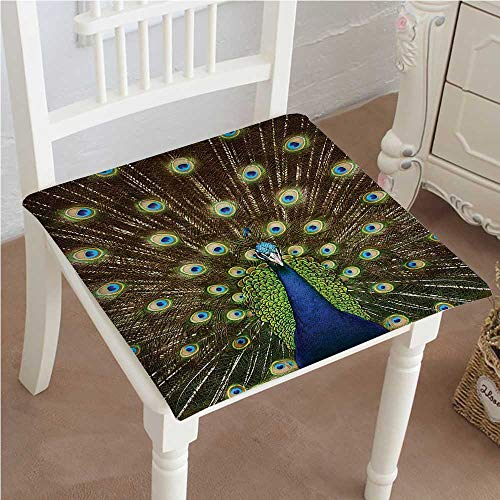 Mikihome Chair Pads Square Cotton Chair Cushion Portrait of with s Out Colors Birds time Garden Soft Thicken Seat Pads Cushion Pillow for Office,Home or Car ()