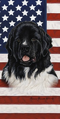 Patriotic Newfoundland Dog - 6