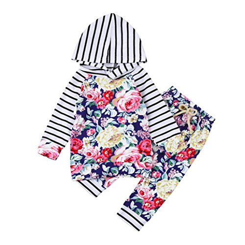 Omiky® 2pcs Kleinkind-Baby-Mädchen-Kleidungs-gesetzte BlumenHoodie Tops + Pants Outfits Mehrfarbig