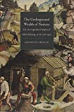 Search : The Underground Wealth of Nations: On the Capitalist Origins of Silver Mining, A.D. 1150-1450 (Yale Series in Economic and Financial History)