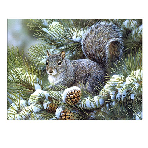 Paint By Number Kits Paintworks Diy Oil Painting For Kids And Adults,Pinecone Squirrel ()