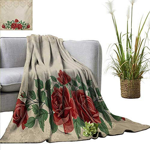 Shabby Chic Living Room/Bedroom Warm Blanket Vintage Glamour Background with Red Rose Love and Attraction Symbol Delicacy Fall Winter Spring Living Room 60