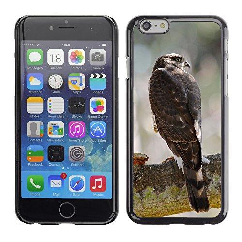 """Premio Sottile Slim Cassa Custodia Case Cover Shell // F00005166 faucon // Apple iPhone 6 6S 6G PLUS 5.5"""""""