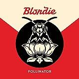 51H81IuCExL. SL160  - Interview - Chris Stein of Blondie
