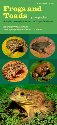 Frog Terry - Frogs and Toads in Your Pocket: A Guide to Amphibians of the Upper Midwest (Bur Oak Guide)