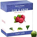 Grow 4 of the Healthiest Vegetables From Seed - Brussel Sprouts, Kale, Beets & Leeks. Superfood Sprout Kit W/ Soil, Organic Planters. Outdoor Garden Gift for Beginner Gardeners, Vegans, Vegetarians