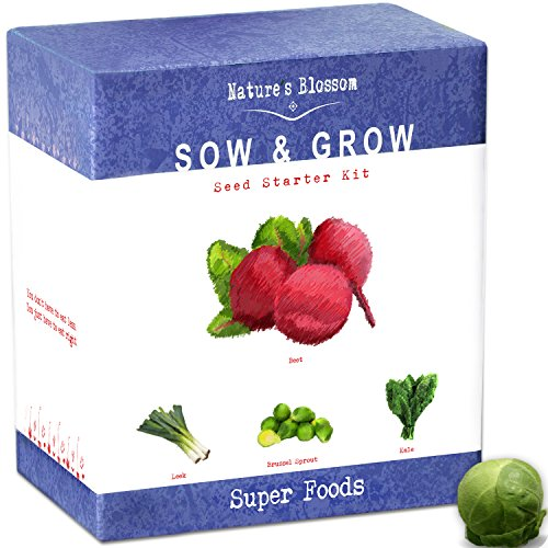 Nature's Blossom Superfood Kit - Grow 4 of The Healthiest Vegetables from Seed - Brussel Sprouts, Kale, Beets & Leeks. Complete Beginners Starter Set with All You Need to Start Your Own Garden