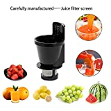 8006 Jucer Auger with Juicing Screen for Omega