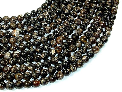 Turritella Agate, Elimia Tenera Fossil Shell, 6mm(6.4mm) Round Beads #BXP_4243 -