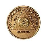 10 Year Bronze AA %28Alcoholics Anonymou