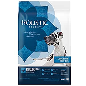 Holistic Select Natural Dry Dog Food, Large & Giant Breed Adult Recipe, 15-Pound Bag
