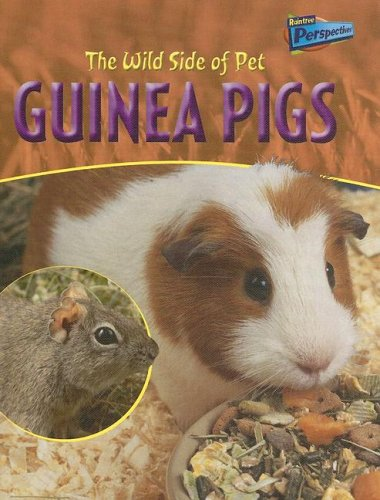 The Wild Side of Pet Guinea Pigs (Perspectives)