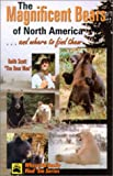 The Magnificent Bears of North America, Keith Vincent Scott, 0888394942