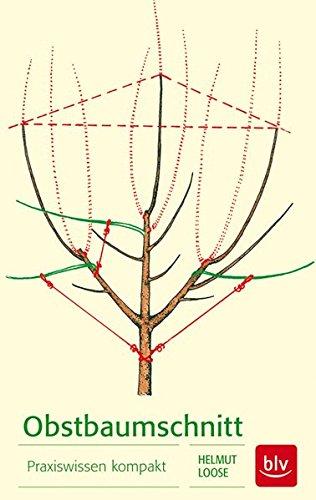 Obstbaumschnitt: Praxiswissen kompakt