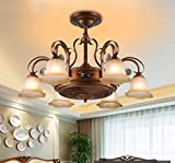 XUEWENZHE Chinese Stealth fan LED chandelier vintage chandelier fan lamp ceiling fan living room bedroom dining home Indoor chandelie