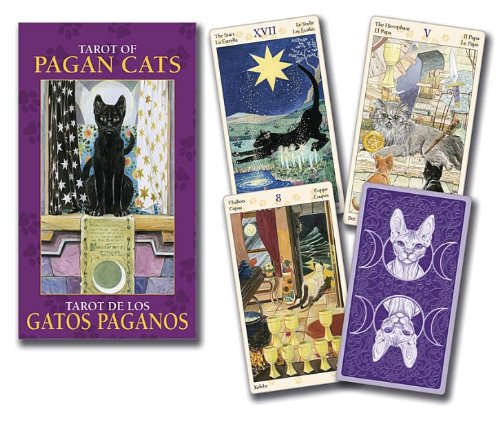 Looking for a pagan otherworlds tarot? Have a look at this 2019 guide!