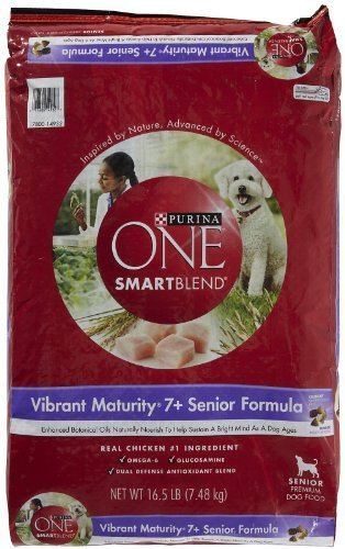 PURINA O.N.E. 178570 One Dogs Security Predection, 16.5-Pound by Phillips Feed & Pet Supply