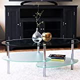 Glass Top Coffee Table with Storage Ryan Rove Fenton 38 Inch Oval Two Tier Glass Coffee Table