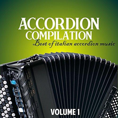 italian accordion - 8