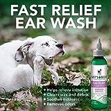 Vet's Best Dog Ear Cleaner Kit | Multi-Symptom