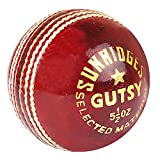 SS Gusty Leather Cricket Ball, Red