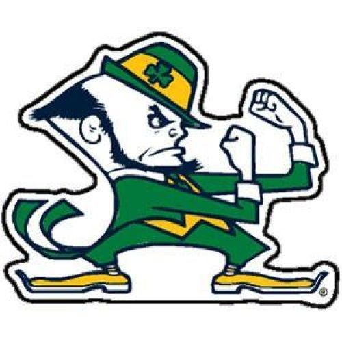 (WinCraft Notre Dame Fighting Irish)