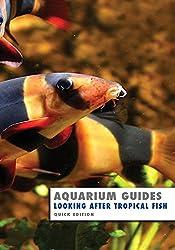 Aquarium Guide: Looking After Tropical Fish