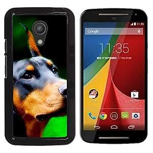 YiPhone /// Prima de resorte delgada de la cubierta del caso de Shell Armor - Doberman Pinscher Canine Dog Breed - Motorola MOTO G 2ND GEN II