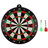 Wall of Dragon Safety Dart Board Set for Kids Adults - 9.45 inch Dartboard & 2 Magnet Darts