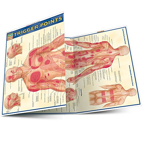 Trigger Points (Quick Study Academic) (Hand Chart Massage)