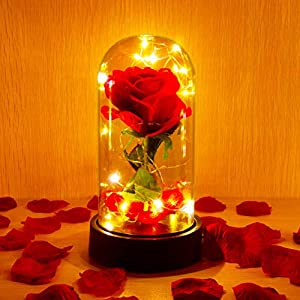 ucho Deluxsa Beauty and The Beast Rose,Enchanted Rose Lamp with Petals & LED Light,Last Forever Rose for Home Decor Holiday Party Anniversary Wedding 23