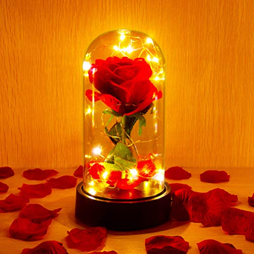 ucho Beauty and The Beast Rose,Enchanted Rose Lamp with Petals & LED Light,Last Forever Rose for Home Decor Holiday Party Anniversary Wedding