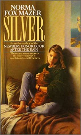 Image result for silver by norma fox mazer