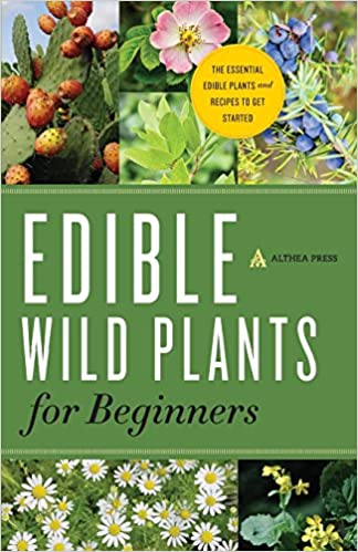 The Essential Edible Plants and Recipes to Get Started Edible Wild Plants for Beginners