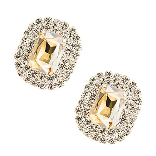 ZAKIA Women' Crystal Gem Removable Shoe Clips Clutch Wedding Party Decoration Pack of 2 (Light Champagne) by ZAKIA