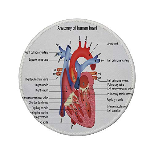 Non-Slip Rubber Round Mouse Pad,Educational,Medical Structure of The Hearts Human Body Anatomy Organ Veins Cardiology,Coral Red Blue,7.87