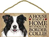 A house is not a home without Border Collie Dog - 5