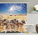 Ambesonne Wildlife Decor Shower Curtain, Zebras in Savannah Desert Waterhole on Hot Day Africa Safari Adventure Land Print, Fabric Bathroom Decor Set with Hooks, 70 inches, Multi