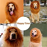 Lion Mane for Dog | Halloween Dog Lion Costume/ Wig/ Hat/ Hair by Furpaw with Extra Free Gift [Lion Tail]