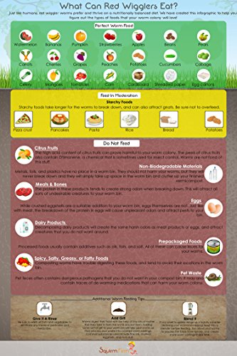 what-can-red-wigglers-eat-infographic-refrigerator-magnet-for-live-red-wiggler-worm-composting-bins-