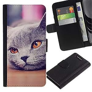 Russian Blue British Shorthair Cat - la tarjeta de Crédito Slots PU Funda de cuero Monedero caso cubierta de piel Sony Xperia Z1 Compact D5503