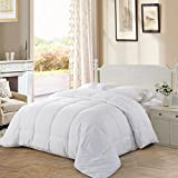All Season Queen Goose Down Alternative Quilted Comforter with Corner Tabs - Hypoallergenic -Double Plush Fabric -Super Microfiber Fill -Machine Washable - Duvet Insert & Stand-Alone Comforter - White