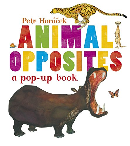 Animal Opposites by Candlewick