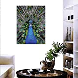 "magnificent peacock wall mural Peacock Canvas Wall Art Magnificent Peacock Portrait Vibrant Colorful Feathers Photo Pattern Customizable Wall Stickers 24""x32"" Blue Green Brown"