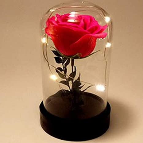 Buy Zesta Beauty And The Beast Rose Lampenchanted With Yellow Led