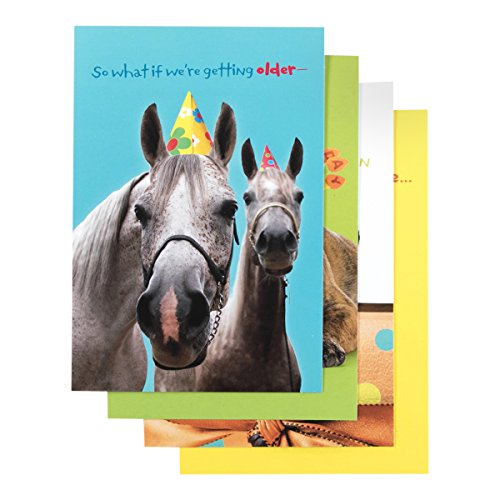 (Birthday - Inspirational Boxed Cards - Humor Pets)